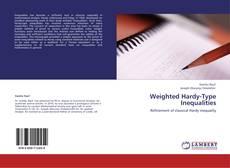 Weighted Hardy-Type Inequalities kitap kapağı