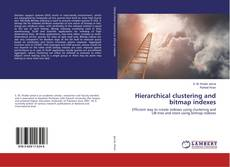 Capa do livro de Hierarchical clustering and bitmap indexes