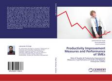Copertina di Productivity Improvement Measures and Performance of SMEs