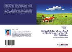 Bookcover of Mineral status of crossbred cattle during pregnancy & early lactation