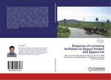 Bookcover of Response of Lactating Buffaloes to Bypass Protein and Bypass Fat
