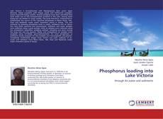 Borítókép a  Phosphorus loading into Lake Victoria - hoz