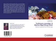 Bookcover of Turbinaria conoides: A Marine Algal Drug Chest