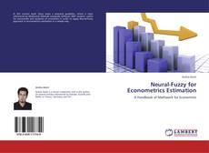 Bookcover of Neural-Fuzzy for Econometrics Estimation