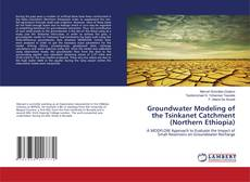 Bookcover of Groundwater Modeling of the Tsinkanet Catchment (Northern Ethiopia)