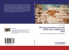 The documentation of walls at DK area, at Mohen jo daro kitap kapağı