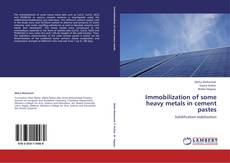 Bookcover of Immobilization of some heavy metals in cement pastes