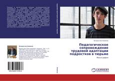 Bookcover of Педагогическое сопровождение трудовой адаптации подростков в тюрьме