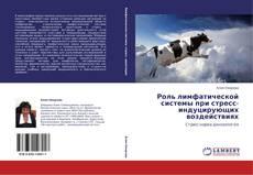 Buchcover von Роль лимфатической системы при стресс-индуцирующих воздействиях