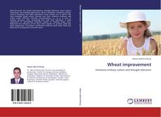 Bookcover of Wheat improvement