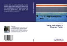 Tense and Aspect in Nigerian Pidgin kitap kapağı