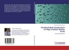 Bookcover of Fluidized Bed Combustion of High Volatile Matter Fuels