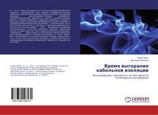 Capa do livro de Время выгорания кабельной изоляции