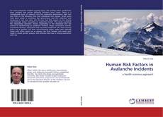 Bookcover of Human Risk Factors in Avalanche Incidents