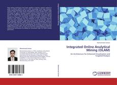Copertina di Integrated Online Analytical Mining (OLAM)