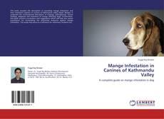 Bookcover of Mange Infestation in Canines of Kathmandu Valley