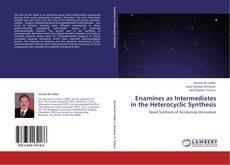 Borítókép a  Enamines as Intermediates in the Heterocyclic Synthesis - hoz