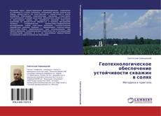 Borítókép a  Геотехнологическое обеспечение устойчивости скважин в солях - hoz