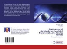 Buchcover von Development of Agrobacterium Mediated Transformation System for Tomato