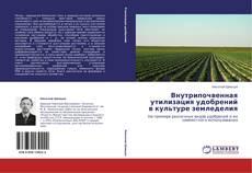 Bookcover of Внутрипочвенная утилизация удобрений в культуре земледелия