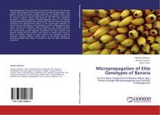 Micropropagation of Elite Genotypes of Banana kitap kapağı