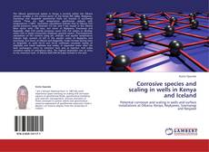 Couverture de Corrosive species and scaling in wells in Kenya and Iceland