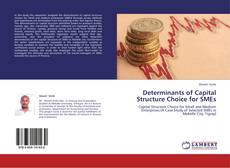 Bookcover of Determinants of Capital Structure Choice for SMEs