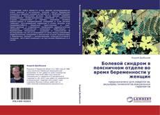 Bookcover of Болевой синдром в поясничном отделе во время беременности у женщин