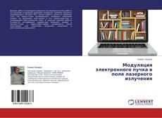Buchcover von Модуляция электронного пучка в поле лазерного излучения