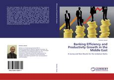 Bookcover of Banking Efficiency and Productivity Growth in the Middle East