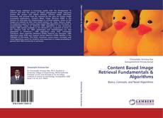 Content Based Image Retrieval Fundamentals & Algorithms kitap kapağı