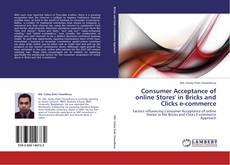 Buchcover von Consumer Acceptance of online Stores' in Bricks and Clicks e-commerce