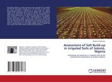 Portada del libro de Assessment of Salt Build-up in Irrigated Soils of Sokoto, Nigeria