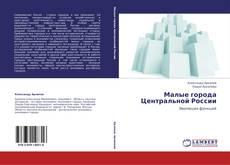Малые города Центральной России kitap kapağı