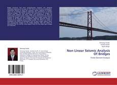 Non Linear Seismic Analysis Of Bridges kitap kapağı