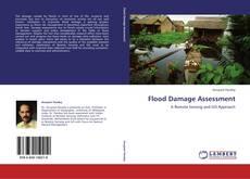 Flood Damage Assessment kitap kapağı