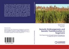 Portada del libro de Somatic Embryogenesis and Genetic Transformation in Sugarcane