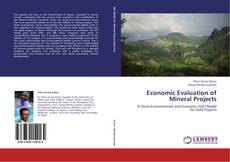 Economic Evaluation of Mineral Projects的封面