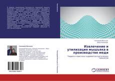 Bookcover of Извлечение и утилизация мышьяка в производстве меди