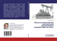 Bookcover of Насосно-эжекторные системы для водогазового воздействия на пласт