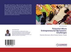 Buchcover von Potential Micro Entrepreneurial Borrowers: Challenges