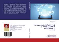 Bookcover of Management of Major Pests of Brinjal (Solanum melongena L.)