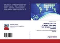 Capa do livro de Оренбургско-Казахстанский трансграничный регион