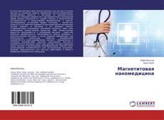Bookcover of Магнетитовая наномедицина