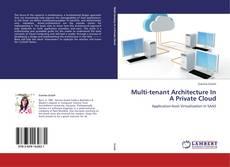 Bookcover of Multi-tenant Architecture In A Private Cloud