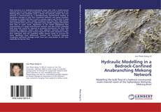 Bookcover of Hydraulic Modelling in a Bedrock-Confined Anabranching Mekong Network