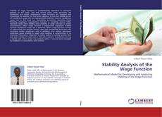 Bookcover of Stability Analysis of the Wage Function