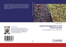 Bookcover of weed management in rice wheat system