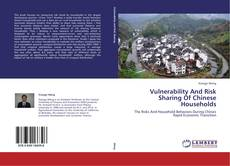 Vulnerability And Risk Sharing Of Chinese Households的封面