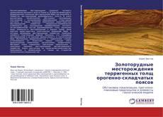 Bookcover of Золоторудные месторождения терригенных толщ орогенно-складчатых поясов